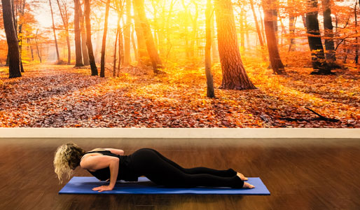 Image of woman doing low plank yoga move